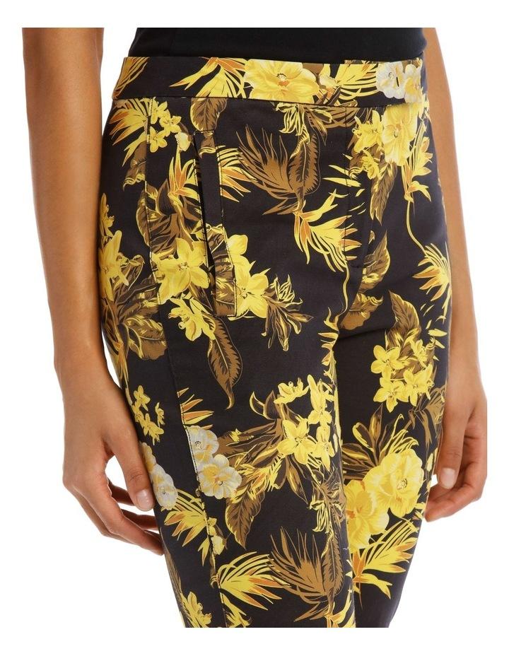 Tapered Leg Printed Fashion Pant image 4