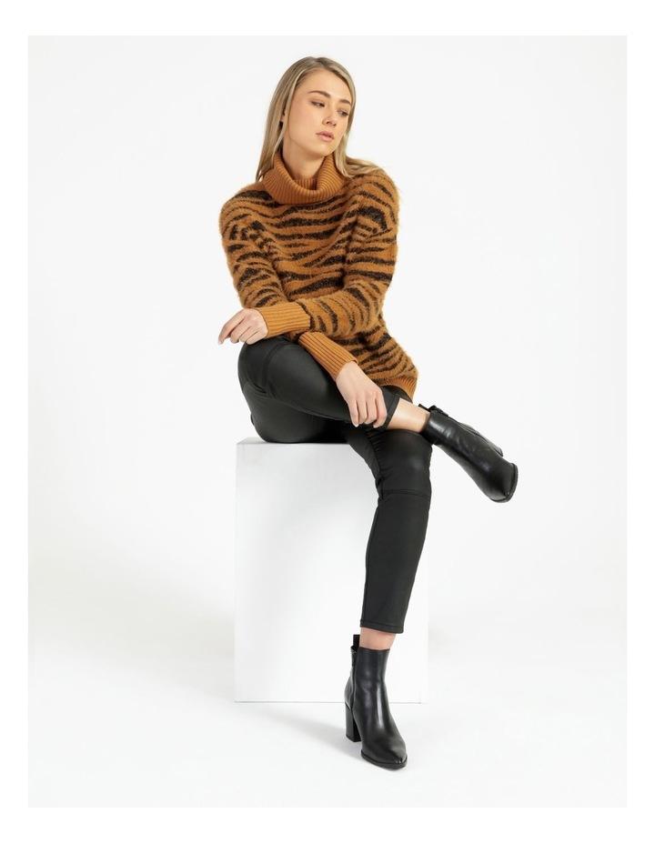 Zebra Jumper image 2
