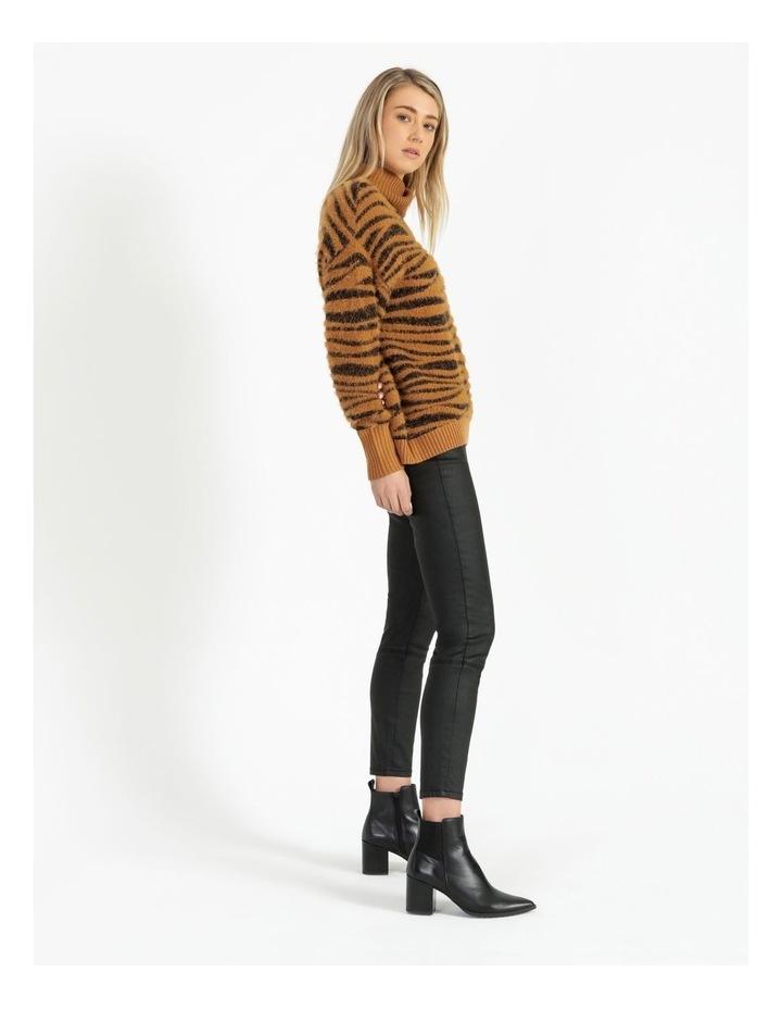 Zebra Jumper image 3