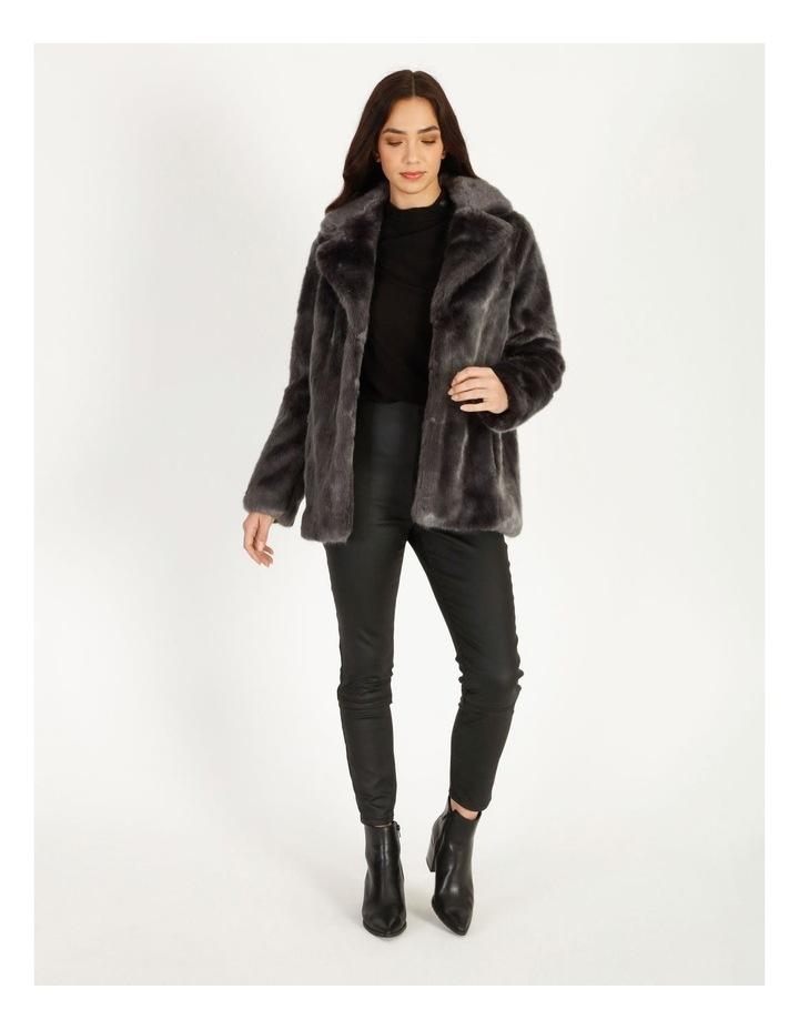 Grey Fur Coat image 2