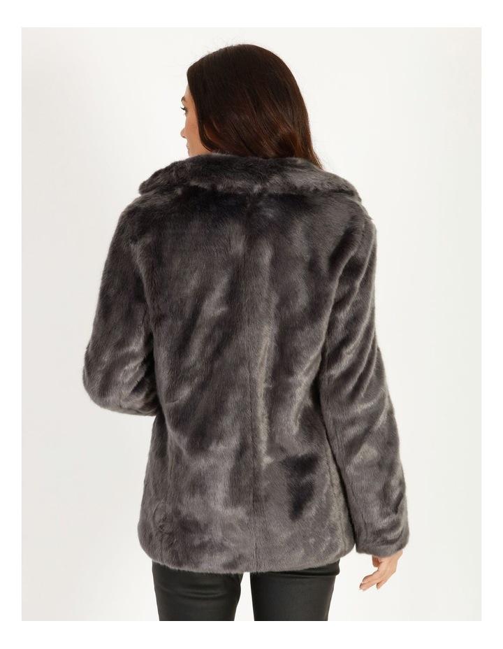 Grey Fur Coat image 4