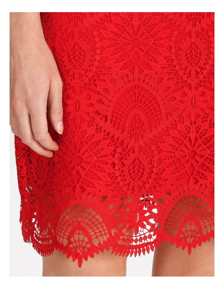 Lace Mini Dress image 5