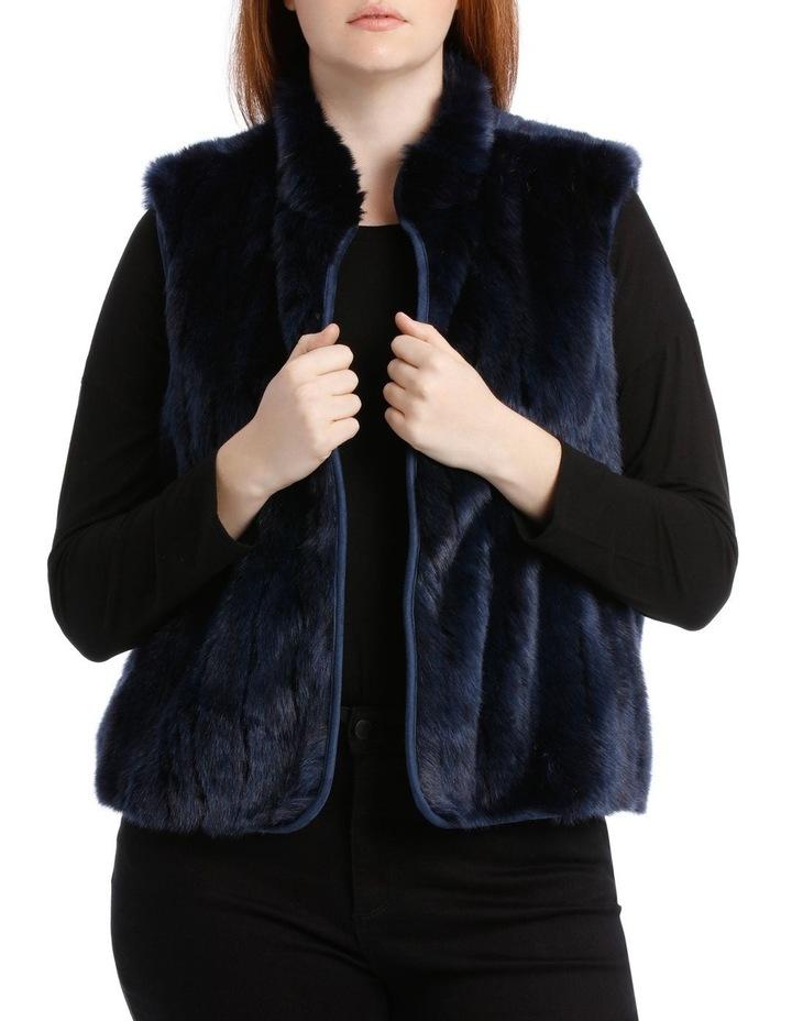 Vest Fur image 1