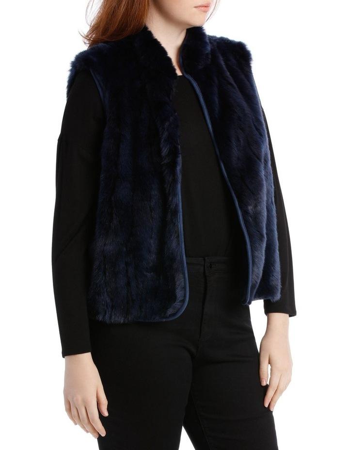 Vest Fur image 2