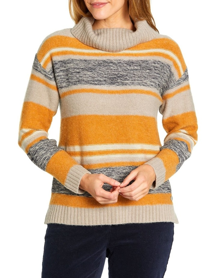 Mixed Stripe Roll Neck Jumper image 1