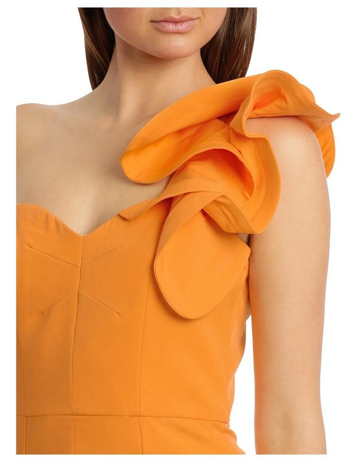 Melissa Frill Shoulder image 4