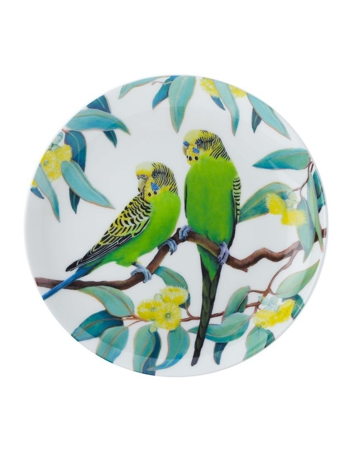 Cashmere Birdsong Plate 20cm Budgies Gift Boxed image 1