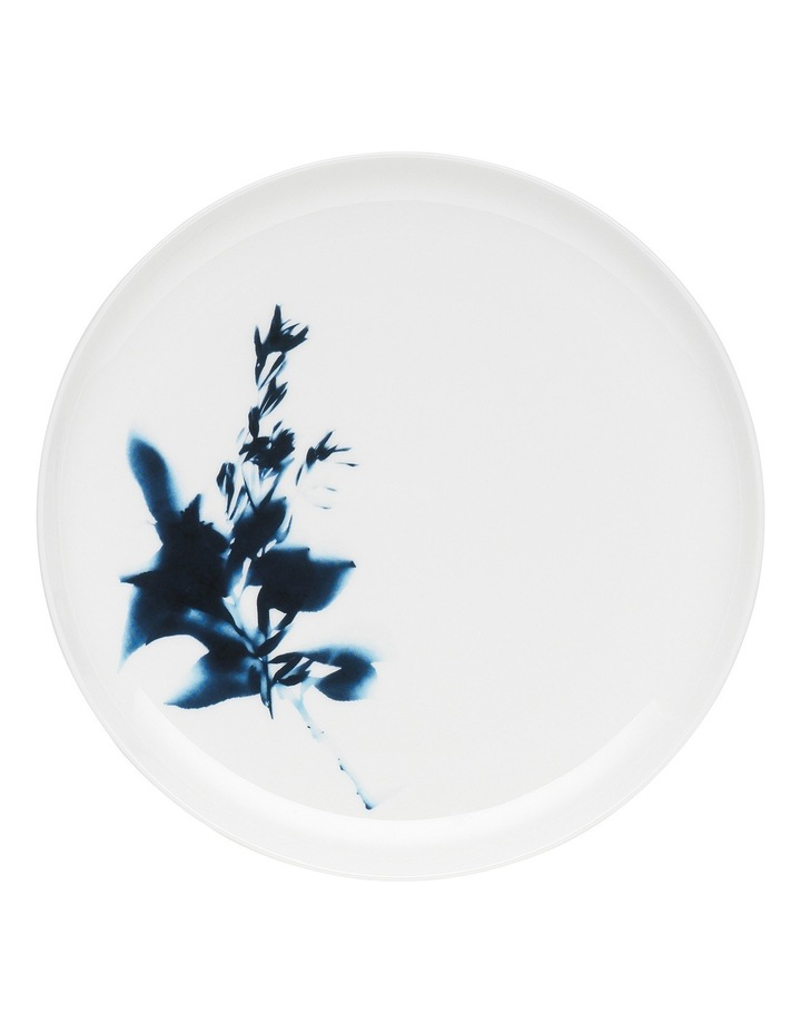 Sunprint Set of 4 Dinner Plate Solar 27cm image 2