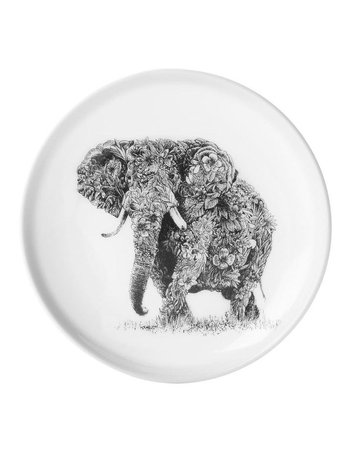 Marini Ferlazzo Plate 20cm African Elephant Gift Boxed image 1