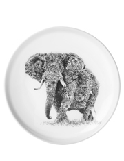 Maxwell & Williams - Marini Ferlazzo Plate 20cm African Elephant Gift Boxed