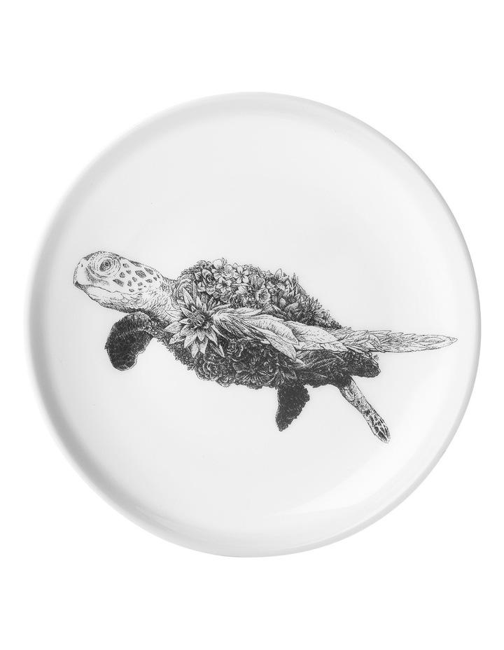 Marini Ferlazzo Plate 20cm Green Sea Turtle Gift Boxed image 1