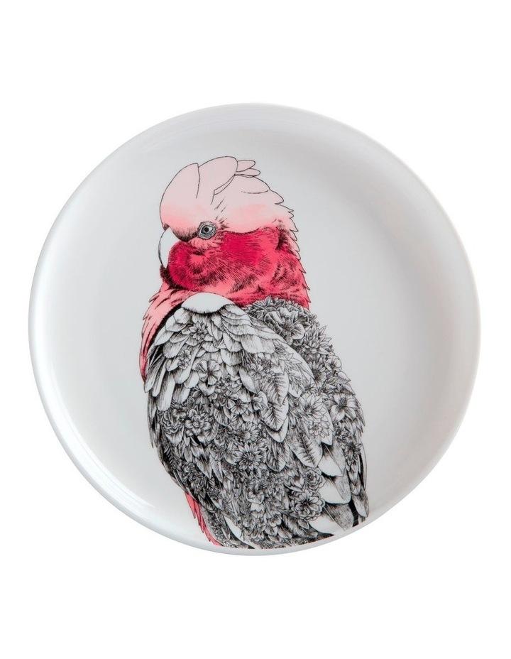 Marini Ferlazzo Birds Plate 20cm Galah Gift Boxed image 1
