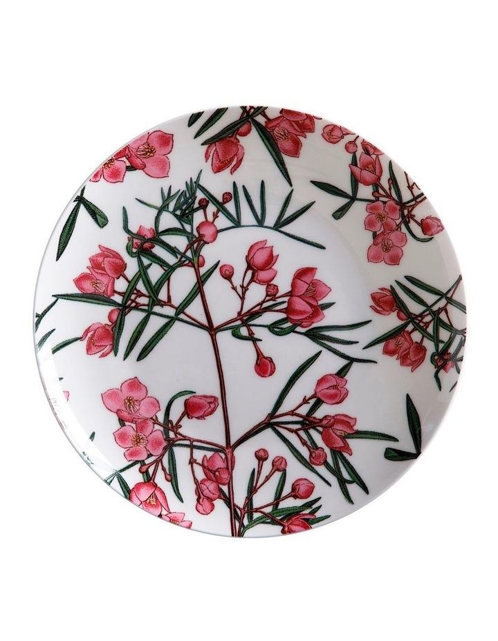 Royal Botanic Garden Plate 20cm Boronia Gift Boxed image 1