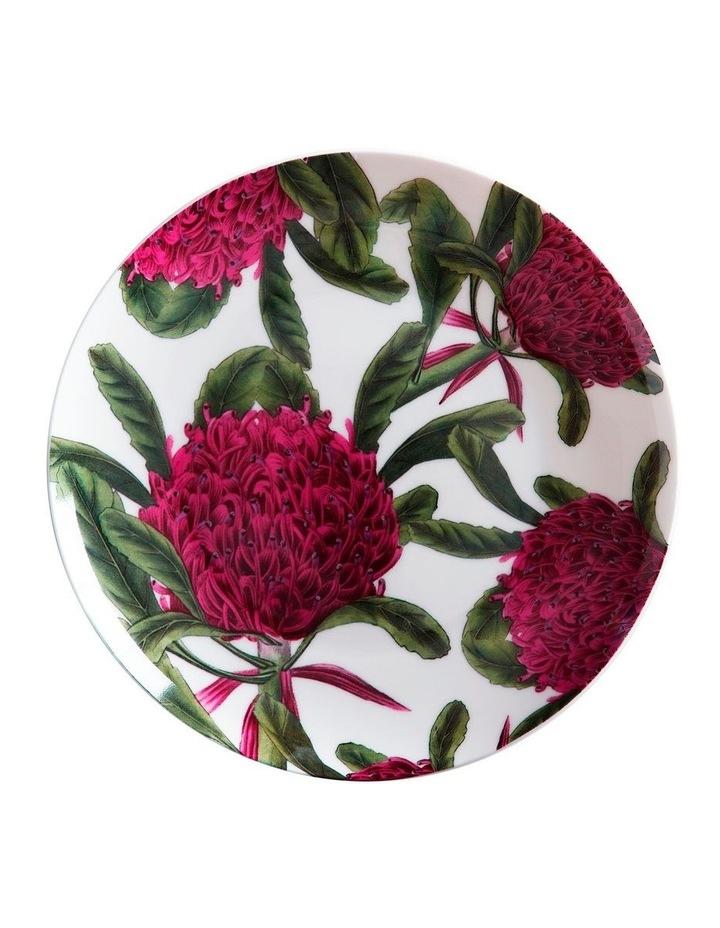 Royal Botanic Garden Telopea 20cm Gift Boxed Plate image 1