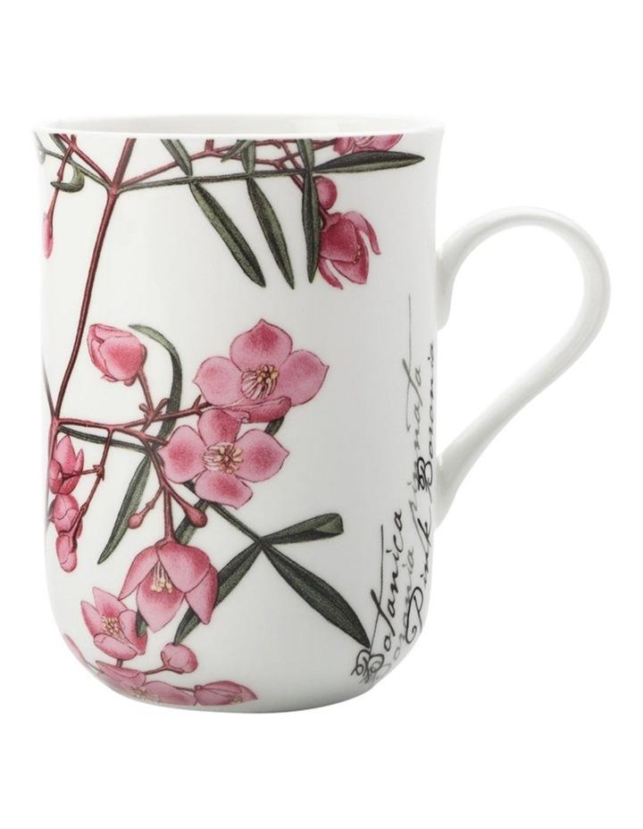 Royal Botanic Garden Mug Boronia 300ML Gift Boxed image 1