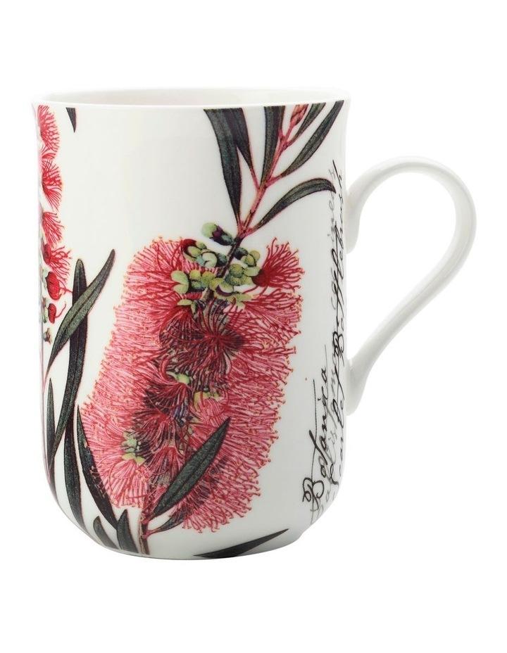 Royal Botanic Garden Mug Bottlebrush 300ML Gift Boxed image 1