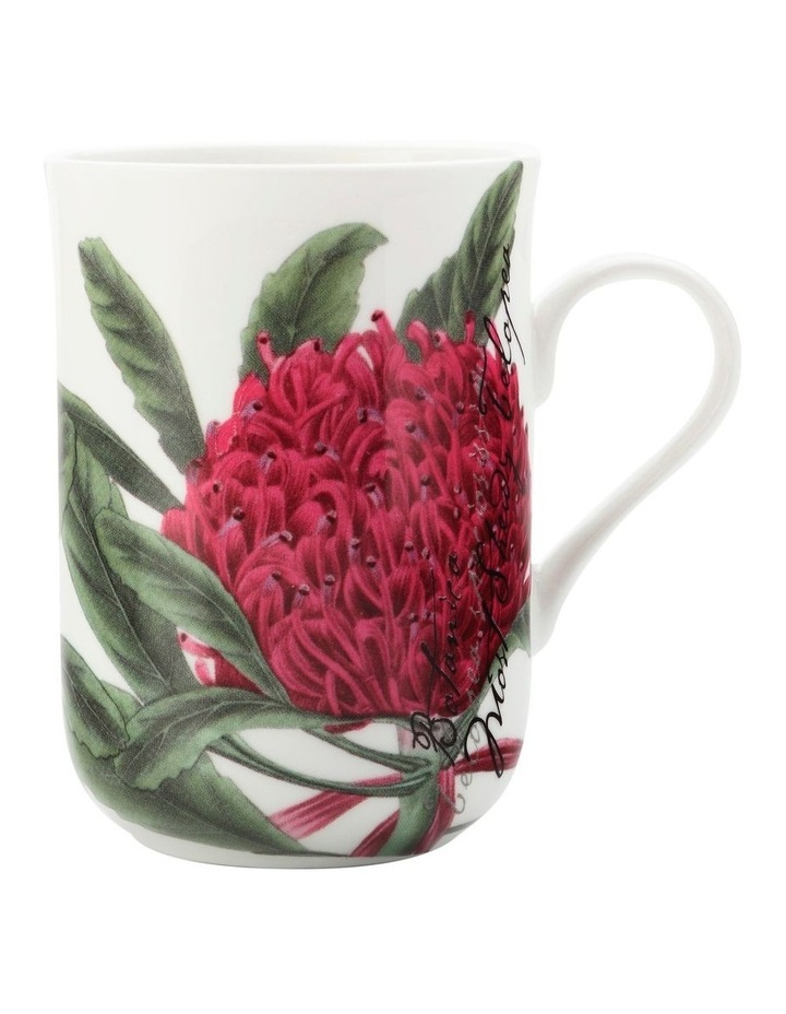 Royal Botanic Garden Mug Telopea 300ML Gift Boxed image 1