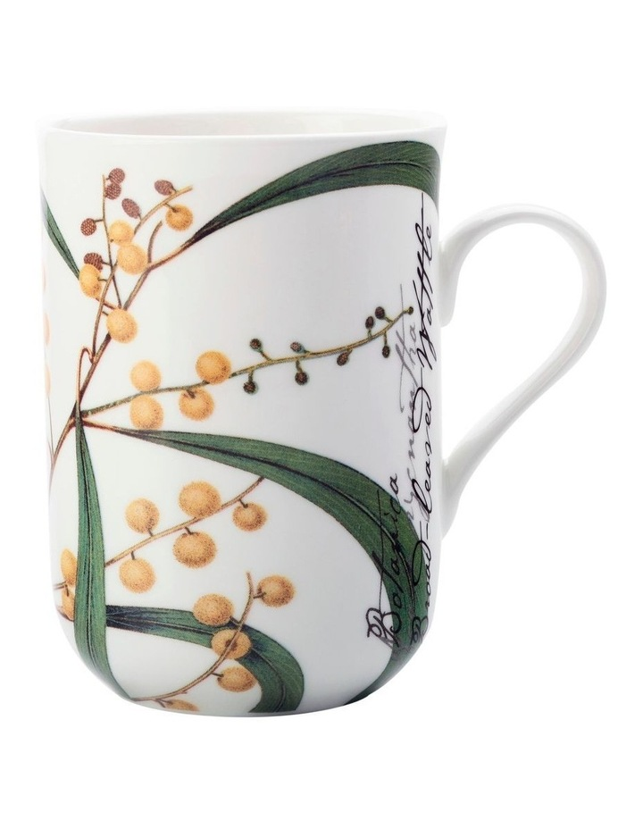 Royal Botanic Garden Mug Wattle 300ML Gift Boxed image 1