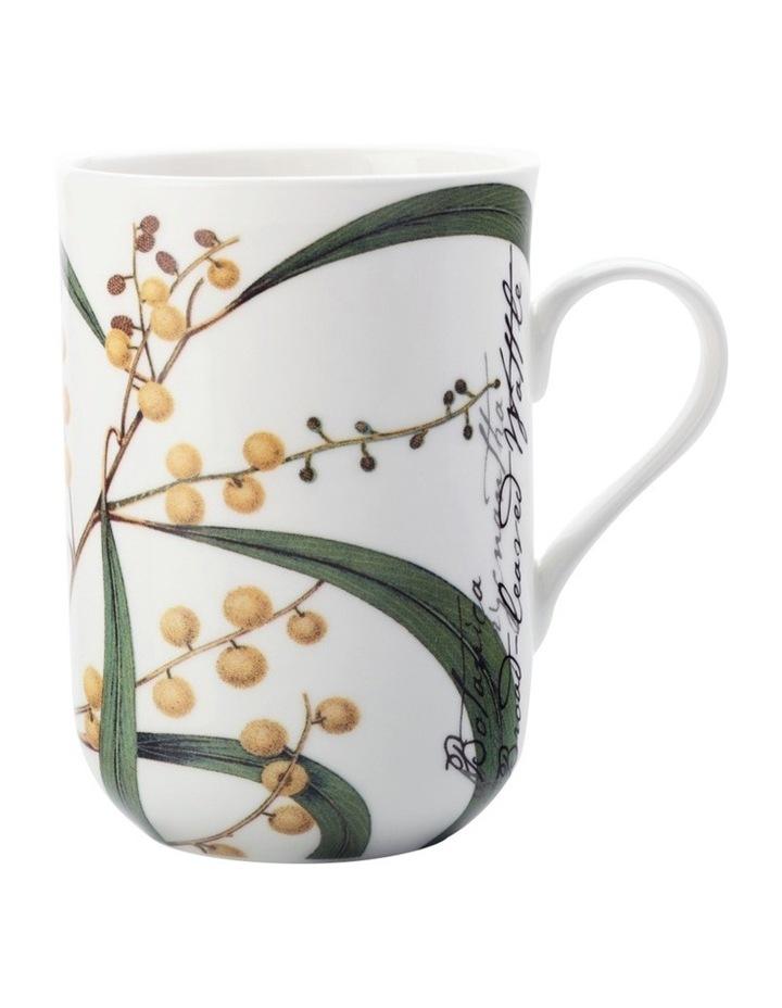 Royal Botanic Garden Mug Wattle 300ML Gift Boxed image 1