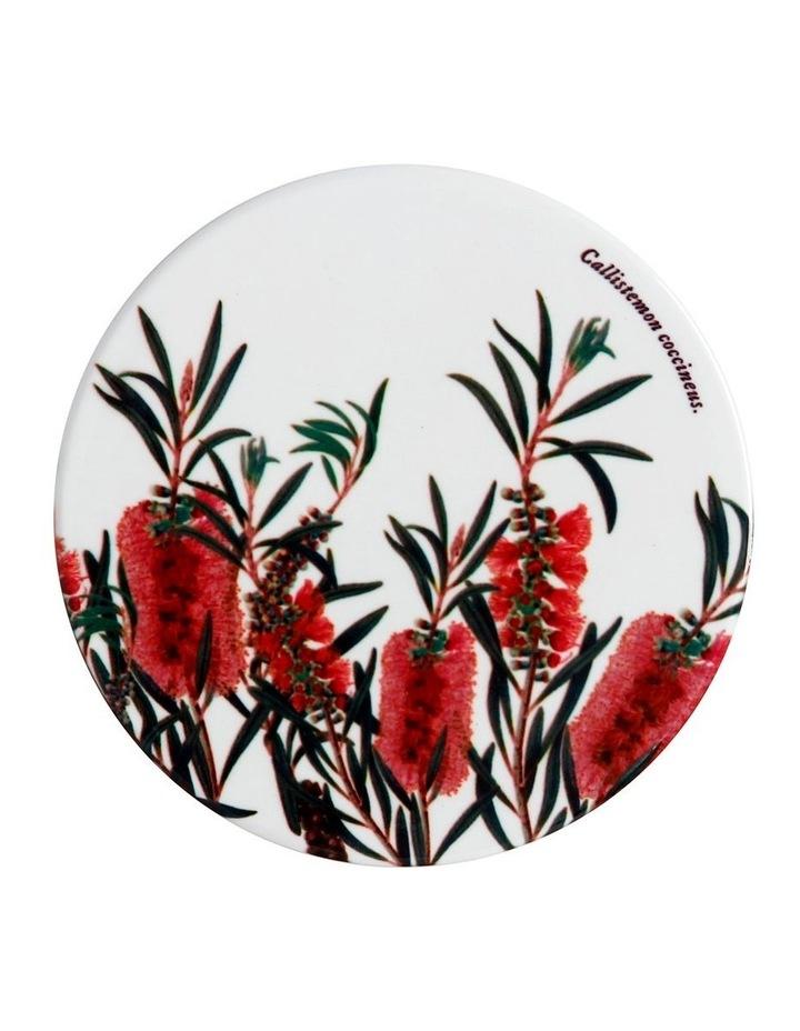 Royal Botanic Garden Ceramic Round Coaster 9.5cm Bottlebrush image 1