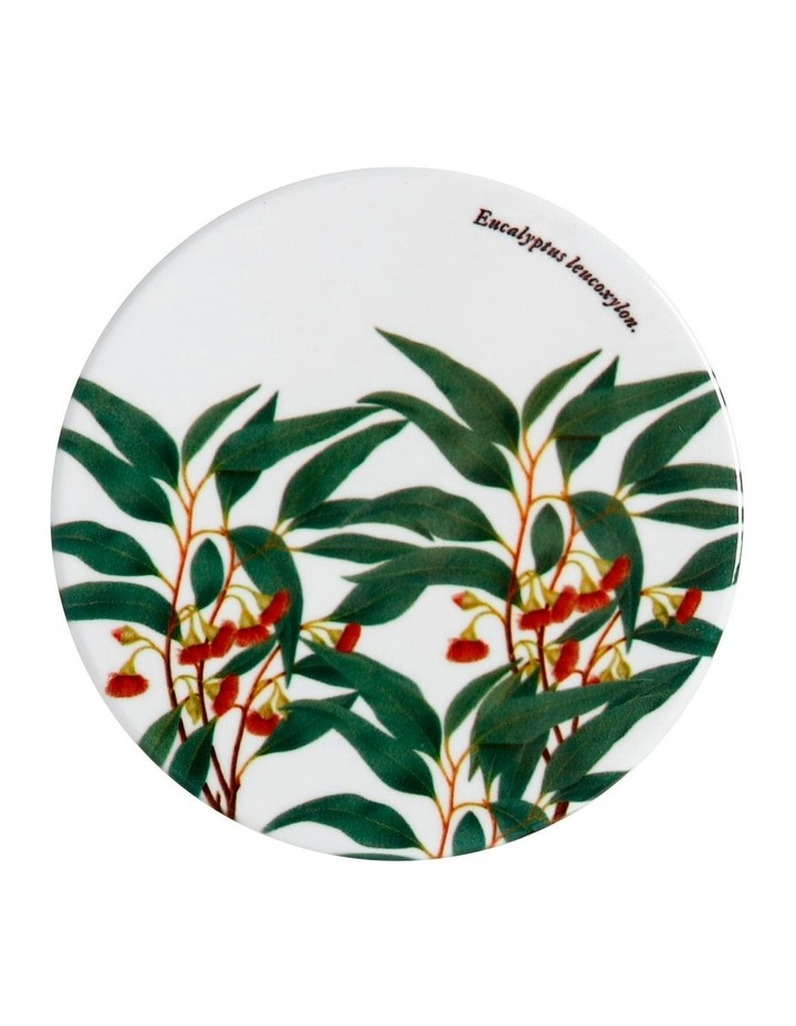 Royal Botanic Garden Ceramic Round Coaster 9.5cm Gum image 1