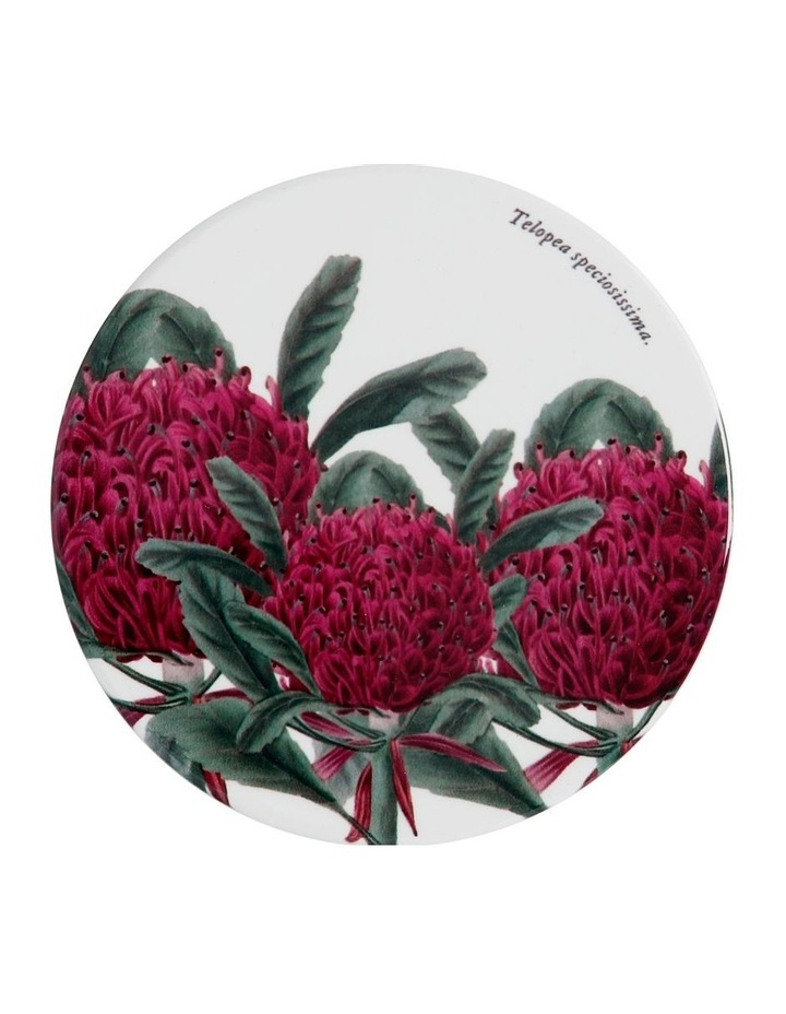 Royal Botanic Garden Ceramic Round Coaster 9.5cm Telopea image 1