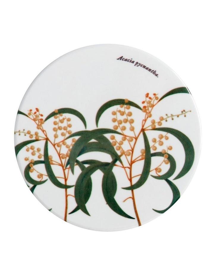 Royal Botanic Garden Ceramic Round Coaster 9.5cm Wattle image 1
