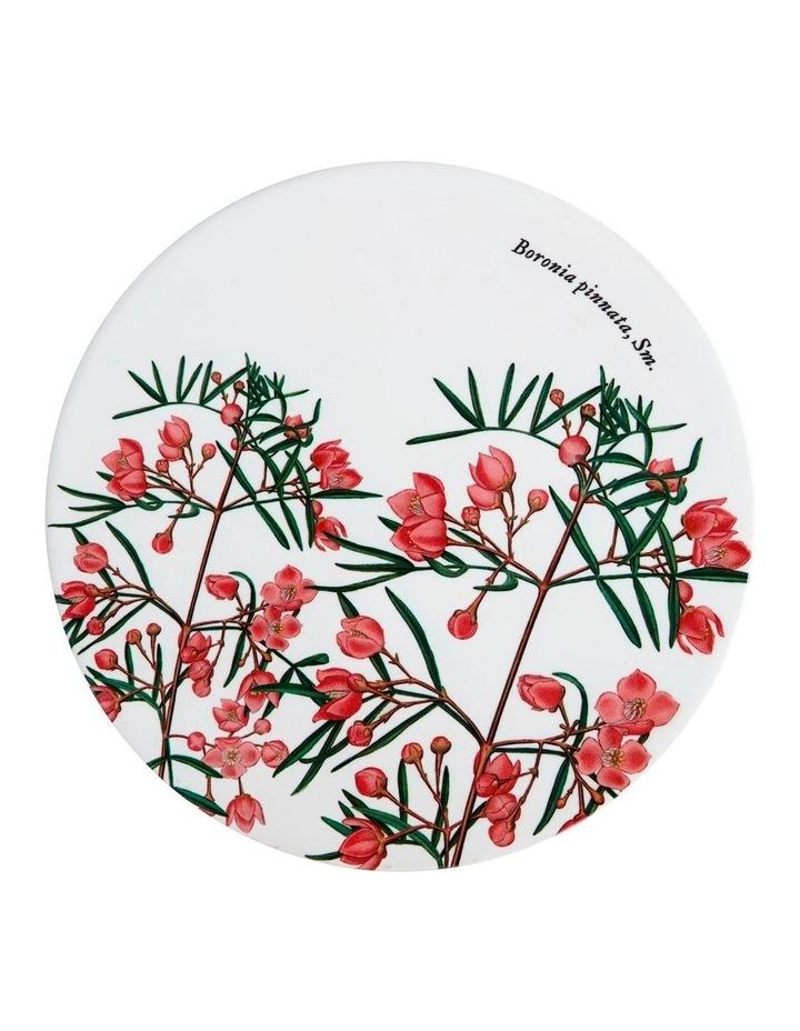 Royal Botanic Garden Ceramic Round Trivet 20cm Boronia image 1