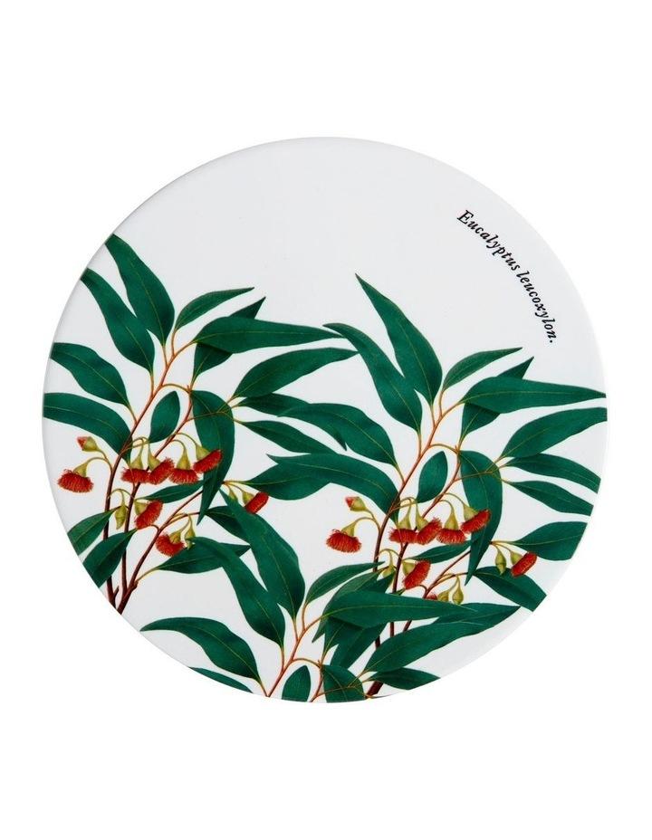 Royal Botanic Garden Ceramic Round Trivet 20cm Gum image 1