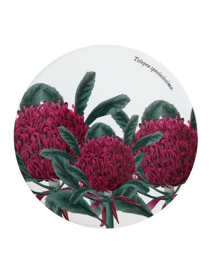 Royal Botanic Garden Ceramic Round Trivet 20cm Telopea image 1