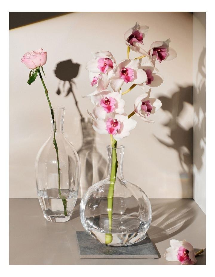 Allium Optic Vase 34cm Boxed image 2