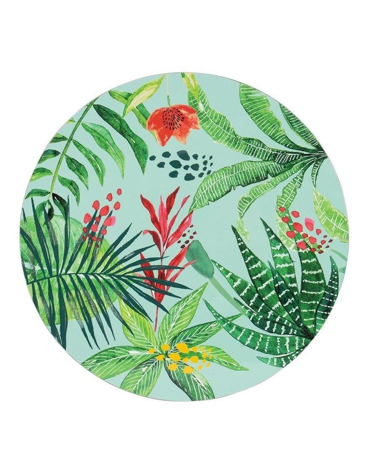 Tierra Foliage 4pk Placemat image 1