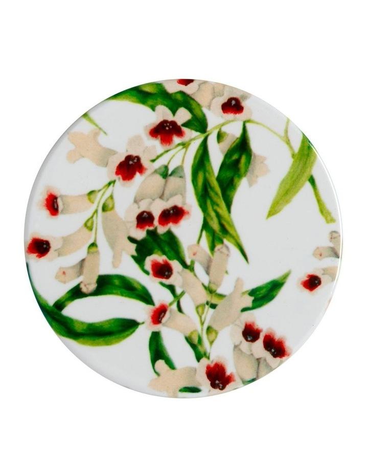 Royal Botanic Garden Euphemia Henderson Ceramic Round Coaster 9.5cm Phkhth image 1