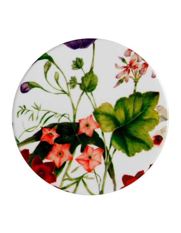 Royal Botanic Garden Euphemia Henderson Ceramic Round Coaster 9.5cm Sweet Pea image 1