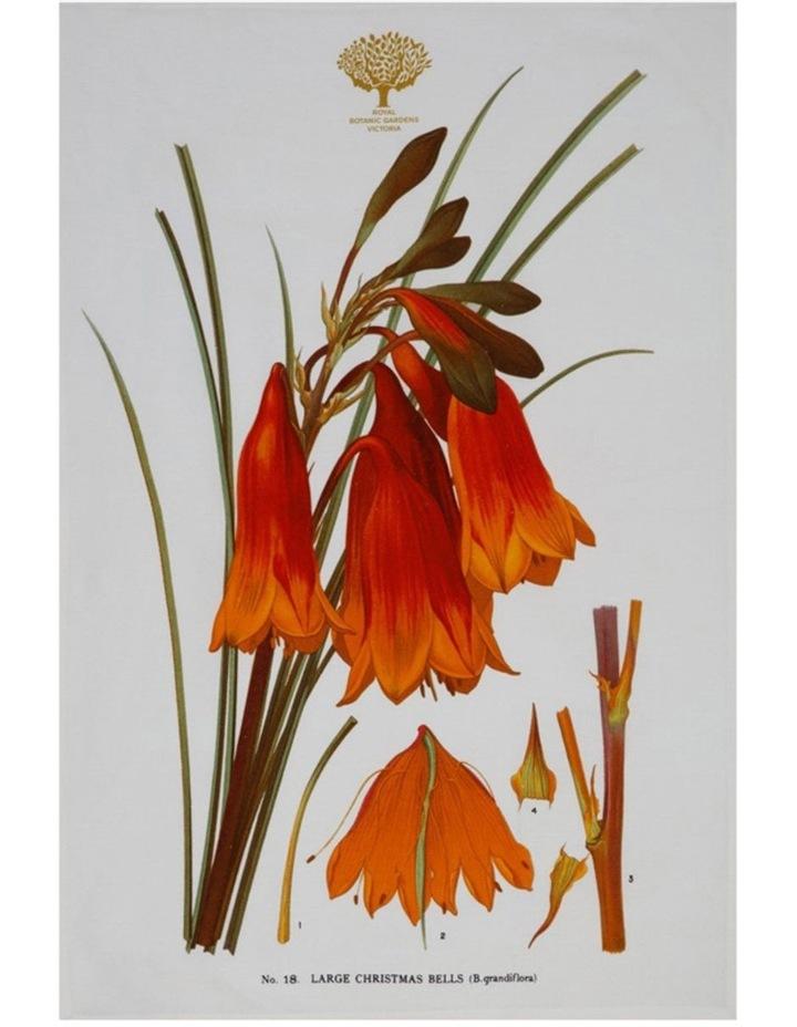 Royal Botanic Garden Tea Towel 50x70cm Bells image 1