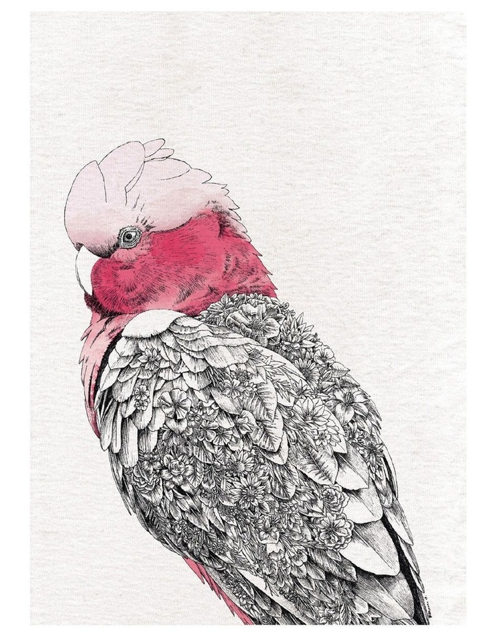 Marini Ferlazzo Birds Tea Towel 50x70cm Galah image 1