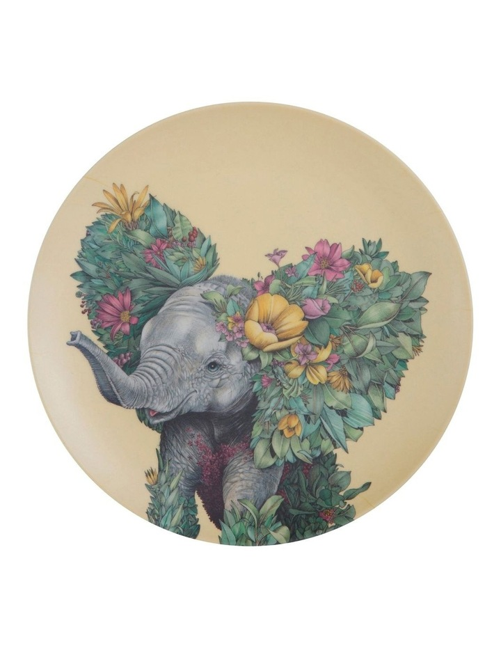 Marini Ferlazzo Wild Planet Bamboo Plate 20cm Set Of 4 Assorted Boxed image 3