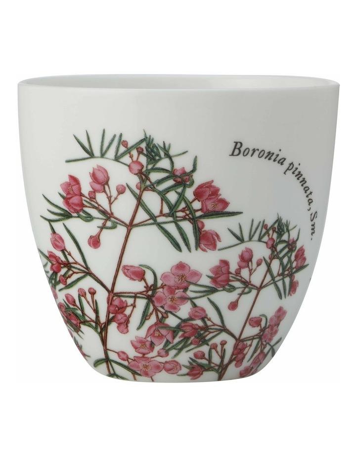 Royal Botanic Gardens Tealight Holder Boronia Gift Boxed image 1