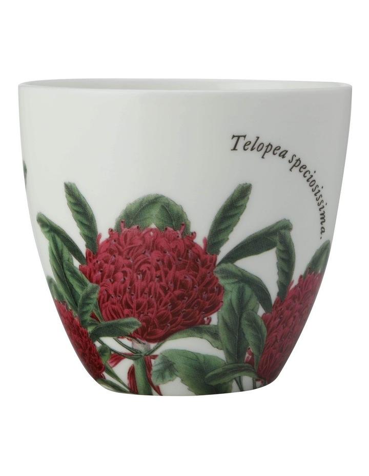 Royal Botanic Gardens Tealight Holder Telopea Gift Boxed image 1
