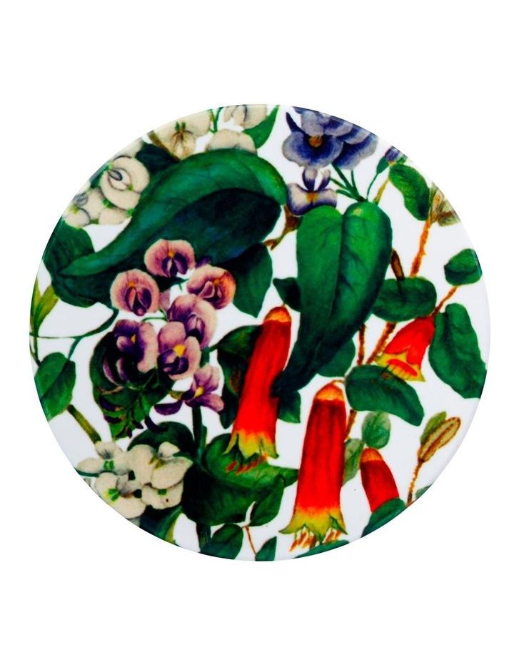 Royal Botanic Gardens Victoria Euphemia Henderson Ceramic Round Coaster 9.5cm Native Fuchsia image 1
