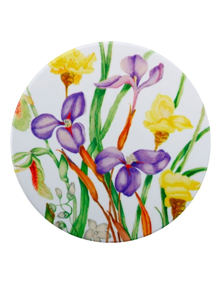 Royal Botanic Gardens Victoria Euphemia Henderson Ceramic Round Coaster 9.5cm Native Iris image 1