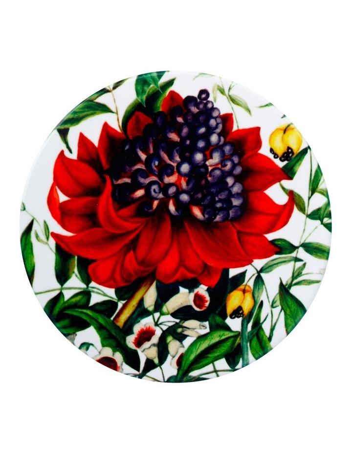 Royal Botanic Gardens Victoria Euphemia Henderson Ceramic Round Coaster 9.5cm Waratah image 1