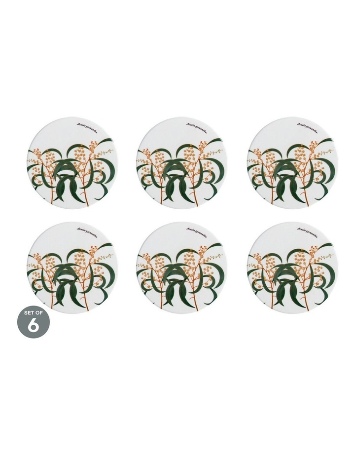 Royal Botanic Gardens Ceramic Round Coaster 9.5cm Wattle Set of 6 image 1