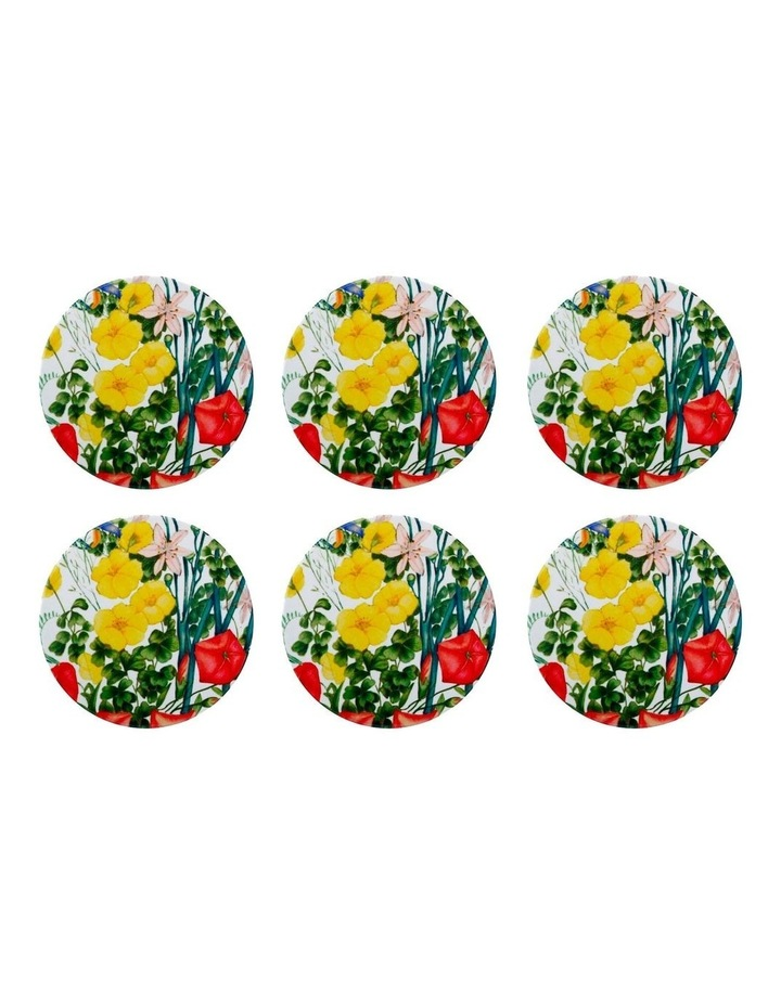 Royal Botanic Gardens Euphemia Henderson Ceramic Round Coaster 9.5cm Buttercup Set of 6 image 1