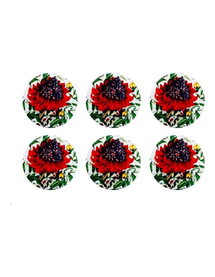 Royal Botanic Gardens Euphemia Henderson Ceramic Round Coaster 9.5cm Waratah Set of 6 image 1
