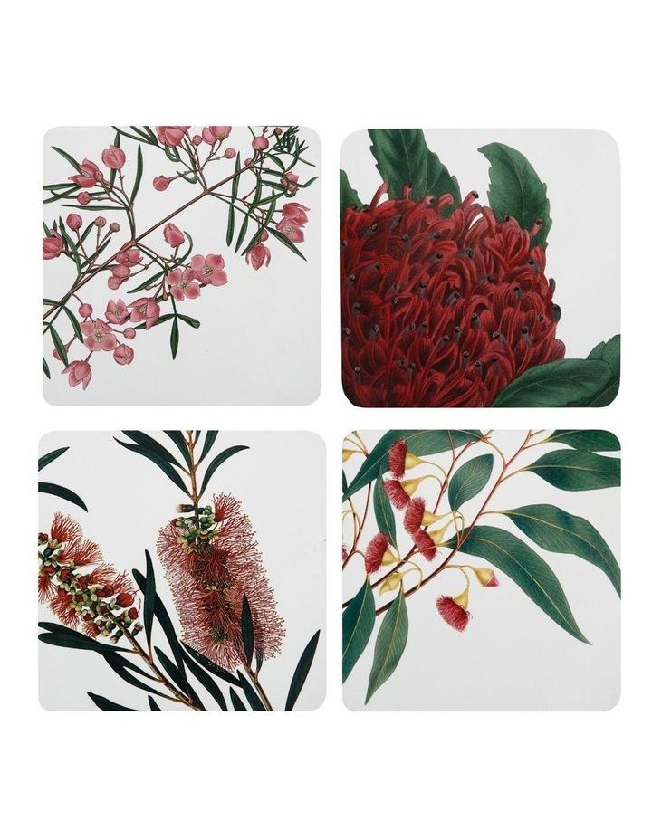 Royal Botanic Gardens Cork Back Coaster 10.5cm Set of 4 Gift Boxed image 1