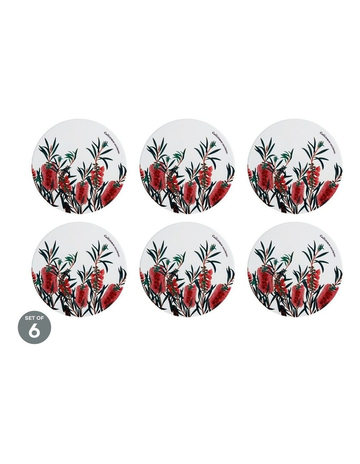 Royal Botanic Gardens Ceramic Round Trivet 20cm Bottlebrush Set of 6 image 1