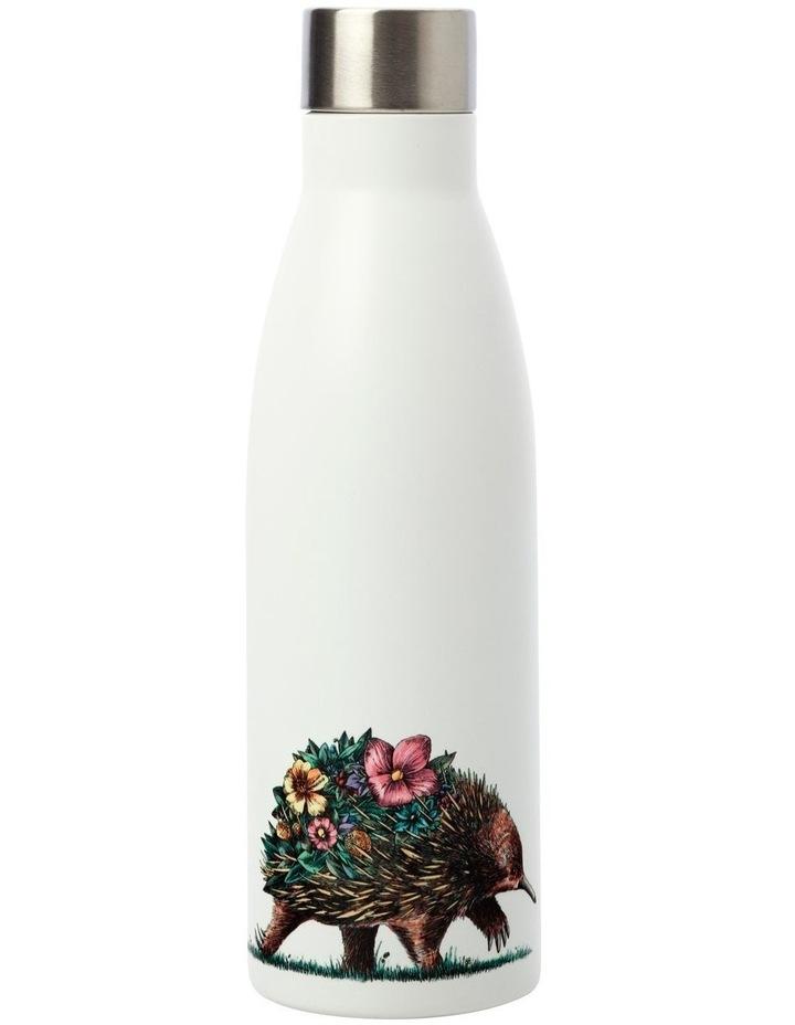 Marini Ferlazzo Australian Families Double Wall Insulated Bottle 500ML Echidna image 1