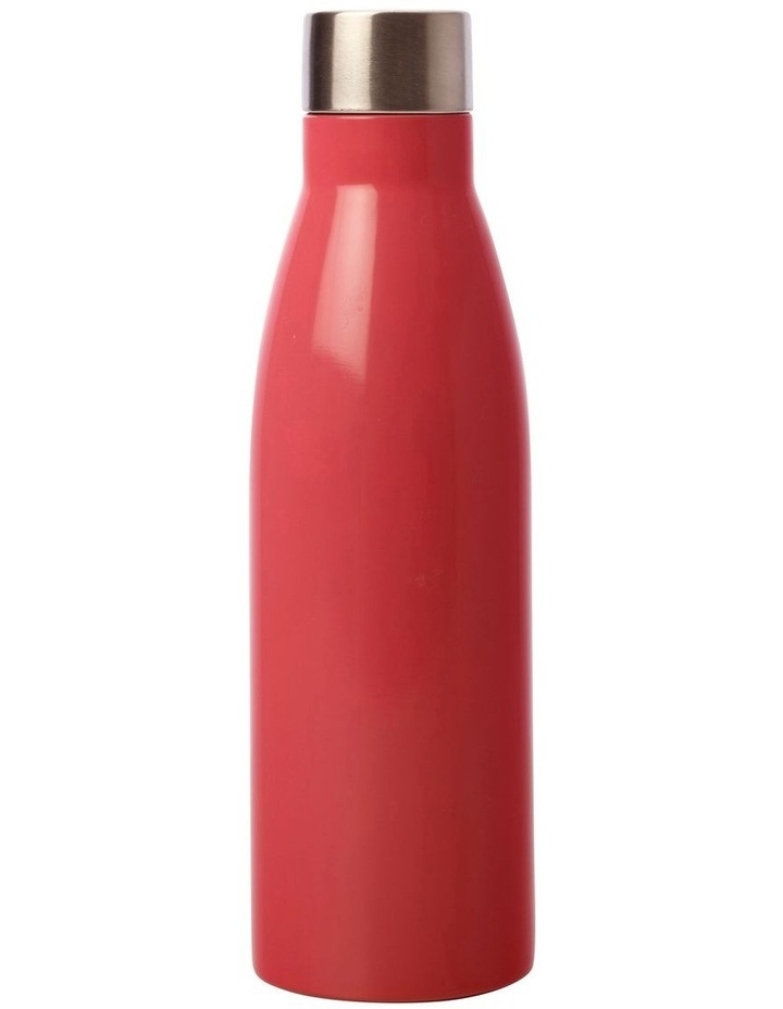 Pete Cromer Wildlife Double Wall Insulated Bottle 500ML Cheetah image 2