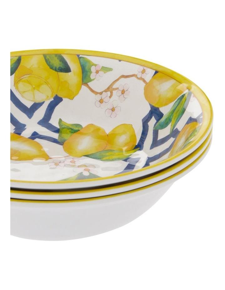 Limone Melamine Small Bowl - Set Of 4 image 2